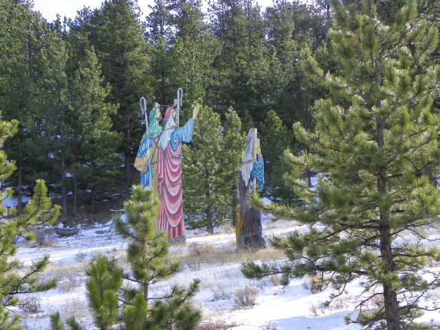 Shepherds in the forest in Estes Park, Coloraod