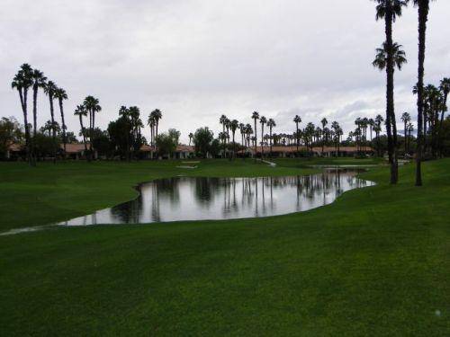 Fresh new pond.
