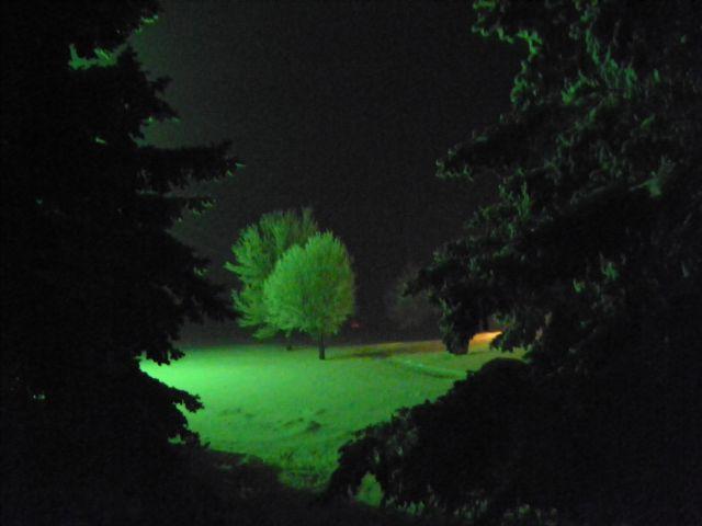Nebraska frosted trees in the night