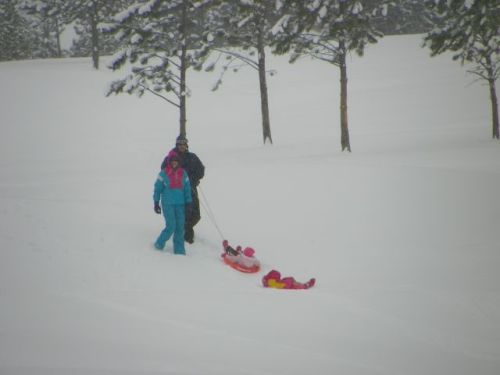 Family enjoys sledding at the Estes Park 18 hole golf course.