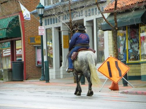 Horse and rider merger into one lane on Elkhorn Avene in Estes Park