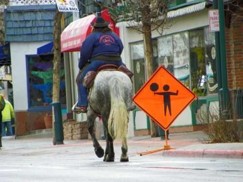 Horse and rider approaching flagman