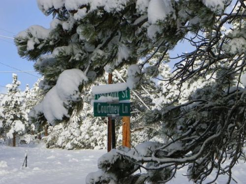 Estes Park Colorado Real Estate