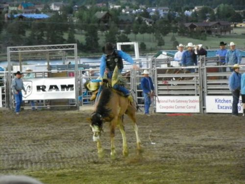 SADDLE BRONK RIDING AT THE ROOFTOP RODEO